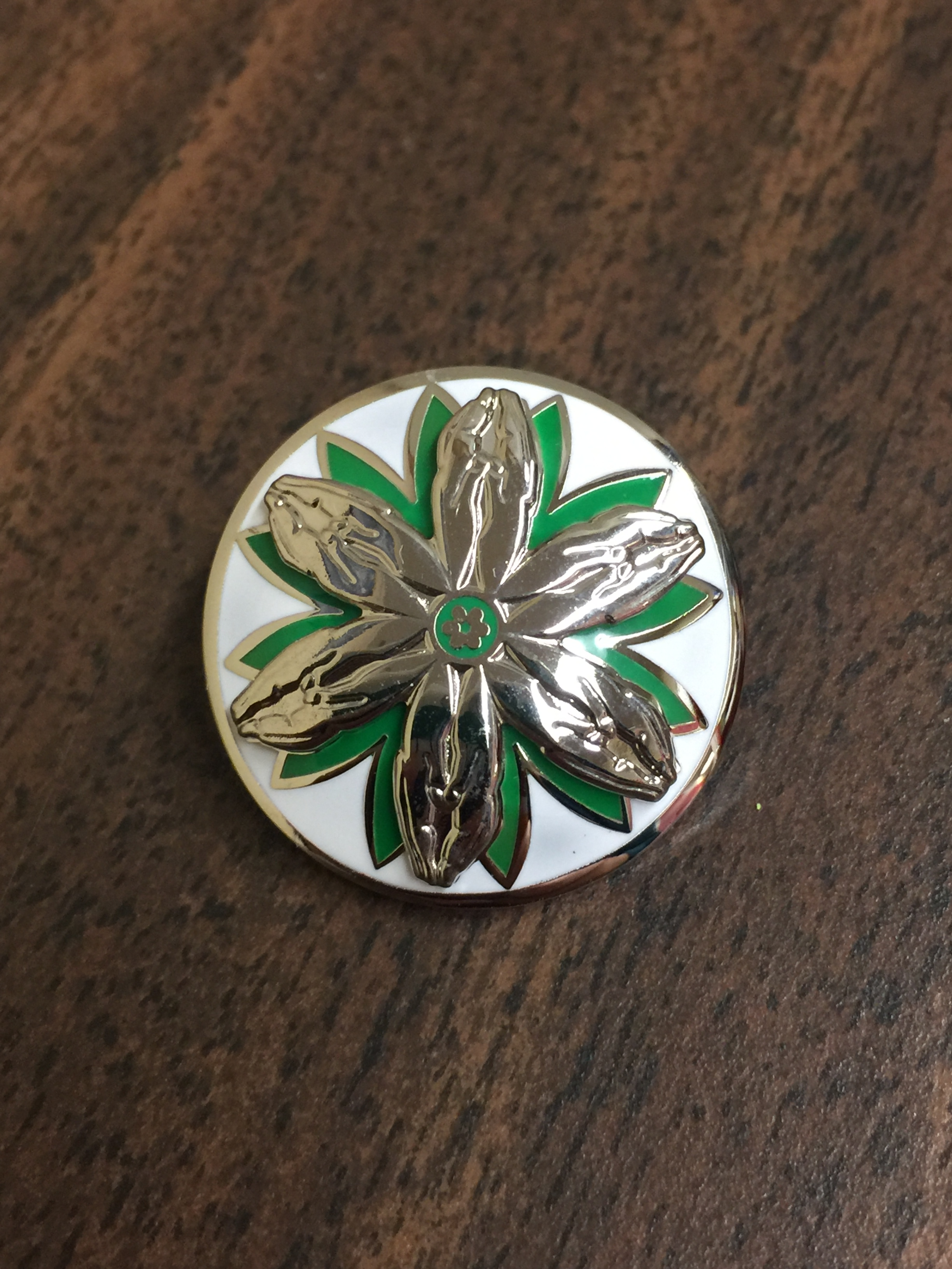 Fellowship of the Least Coin Pin